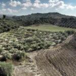 AgroPublic | dasikoi xartes iefimerida