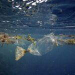 AgroPublic | ocean pollution 1024x683 1