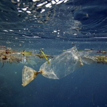 AgroPublic   ocean pollution 1024x683 1