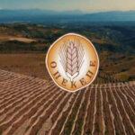 AgroPublic | opekepe diadikasies 600 1