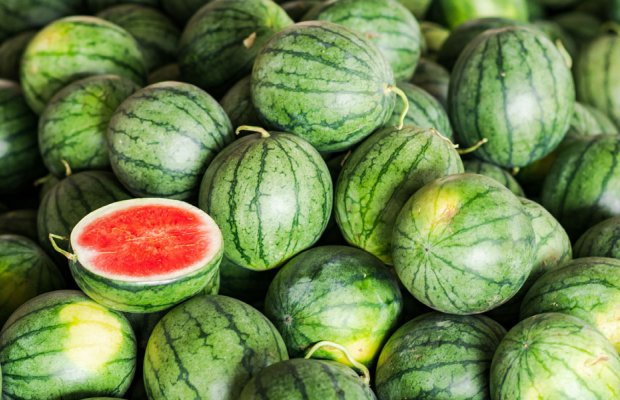 AgroPublic | photo 1072587566 watermelon