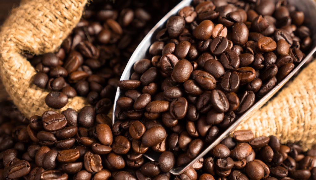AgroPublic | thehomeissue coffeeseeds0 1024x585 1