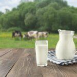 AgroPublic | Milk at prairie