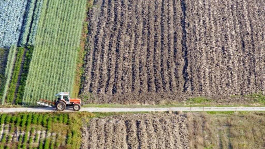 AgroPublic | agrotiki gi aftodioikisi 768x510 1280x720 1 scaled