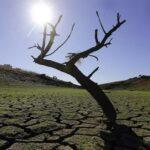 AgroPublic | i klimatiki allagi auksanei diabrosi edafous fernei plimmures