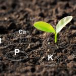 AgroPublic | SoilNutrients