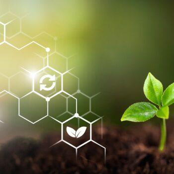AgroPublic | biodiegertes