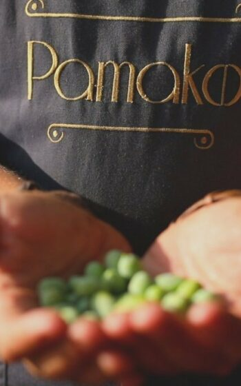 AgroPublic | pamako3