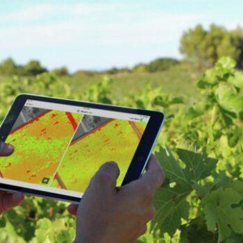 AgroPublic | 31252707 digital farming agripulse