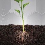 AgroPublic | biodiegertes agropublic