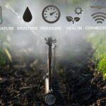AgroPublic | 291de004c6e0ff756e2311ca78890305