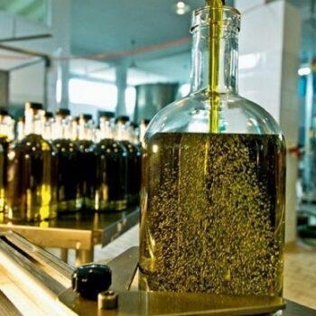 AgroPublic | olive oil 2